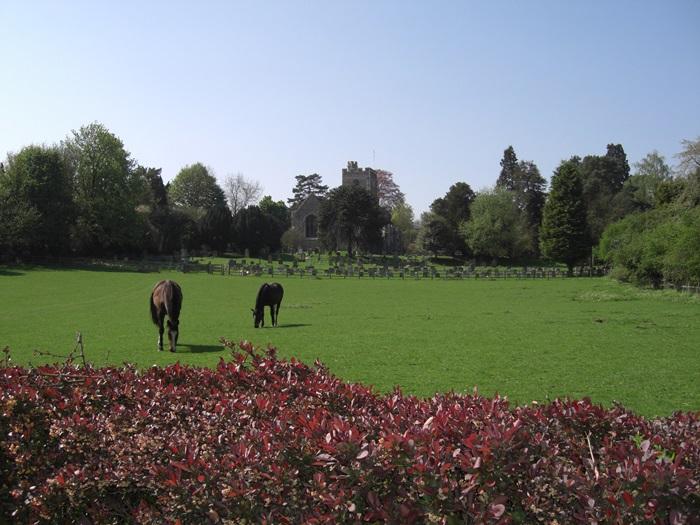Watton-at-Stone Church Field